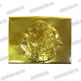 Пряжка морских кадетских корпусов (якорь,орёл,лучи)
